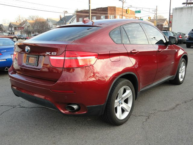 2010 BMW X6 Extended Cab Standard Box 4-Wh