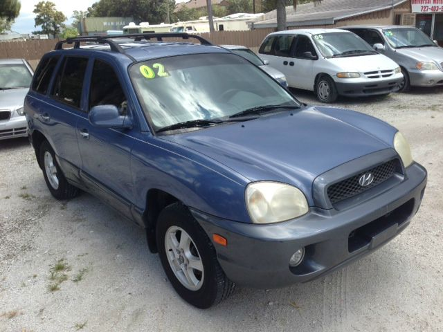 2002 Hyundai Santa Fe Elk Conversion Van