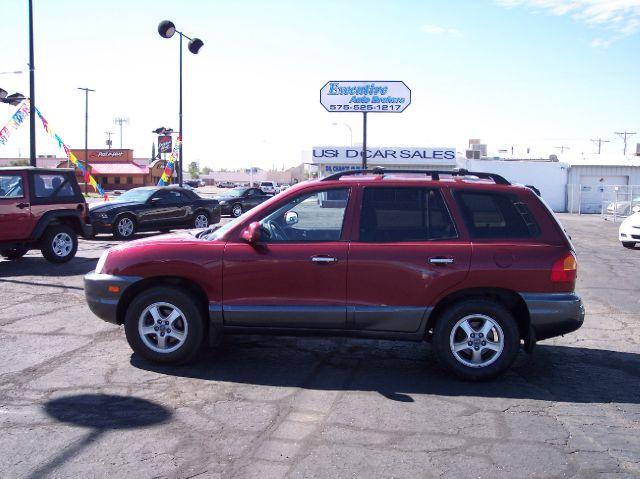 2003 Hyundai Santa Fe Elk Conversion Van